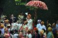 Ritesh Deshmukh arriving on horse back with the baaraatis at his wedding venue photo