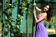 Sarah Jane Dias Panjaa Movie Actress Pic