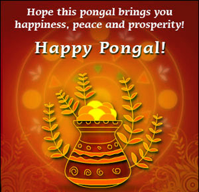 Happy Pongal Wishes : pongal on Rediff Pages